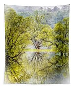 Caress In The Mist Tapestry