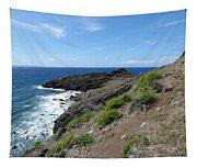 Caribbean Coastal Path Tapestry