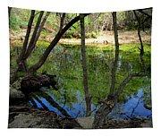 Carmel River At Gilmore Ranch Tapestry