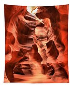 Carved Canyon Wals Tapestry