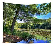 Cary Lake In August Tapestry