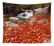 Cascade Brook Tapestry