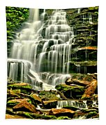 Cascades Of Erie Falls  Tapestry