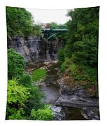 Cascadilla Gorge Cornell University Ithaca New York 01 Tapestry