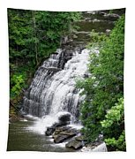 Cascadilla Waterfalls Cornell University Ithaca New York 03 Tapestry