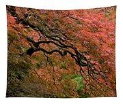 Cascading Japanese Maple Tapestry