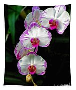 Cascading Orchid Beauties Tapestry