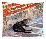 Cat Against Stone Tapestry