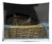 Cat In The Window Tapestry