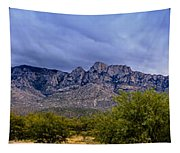 Catalina Mountains P1 Tapestry