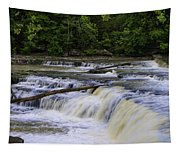 Cataract Falls Phase 1 Tapestry