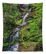Cathedral Falls 2 Tapestry