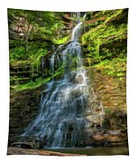 Cathedral Falls - Paint Tapestry