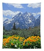 Dm9328-cathedral Group Tetons  Tapestry