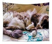 Catnap Tapestry