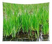 Cattail Green Tapestry