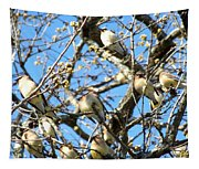 Cedar Waxwing Family Tapestry
