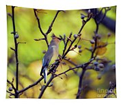 Cedar Waxwing With Windblown Crest Tapestry