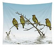 Cedar Waxwings On A Branch Tapestry