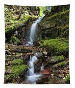 Centennial Falls Tapestry