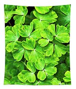 Certain Green Tapestry