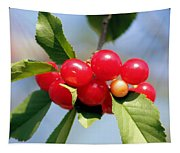 Cheery Cherries Tapestry