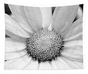 Cheery Daisy - Black And White Tapestry