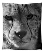 Cheetah Black And White Tapestry
