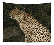 Cheetah Watching Tapestry