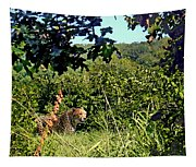 Cheetah Zoo Landscape Tapestry
