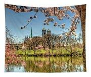 Cherry Blossom Branch Brook Park, Newark, Nj  Tapestry
