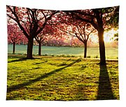 Cherry Blossom In A Park At Dawn Tapestry