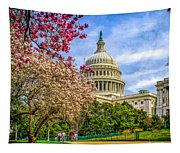 Cherry Blossoms At The Capitol Tapestry