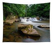 Chestnut Creek Falls  Tapestry
