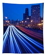 Chicagos Lake Shore Drive Tapestry