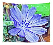 Chicory On Trail To North Beach Park In Ottawa County, Michigan  Tapestry