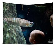 Children Watch Silver Arowana Fish Tapestry