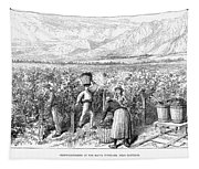 Chile: Wine Harvest, 1889 Tapestry