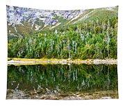 Chimney Pond Reflections 2 Tapestry