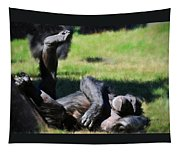 Chimp Sunbathing Tapestry