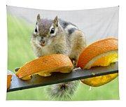 Chipmunk And Oranges 2 Tapestry