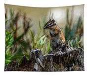Chipmunk On Its Favorite Stump Tapestry