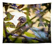 Chipping Sparrow In The Brush Tapestry