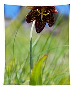 Chocolate Lily Two Tapestry