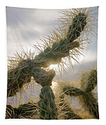 Cholla, Organ Pipe National Monument, Az  January 2015 Tapestry