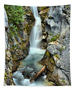 Christine Falls In The Canyon Tapestry