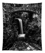 Christine Falls - Mount Rainer National Park - Bw Tapestry