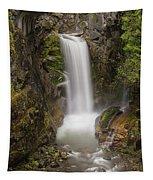 Christine Falls Mt Rainier Washington Tapestry