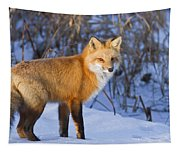 Christmas Fox Tapestry