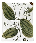 Cinnamon Tree, 1735 Tapestry